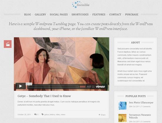 Sociallike WordPress Theme