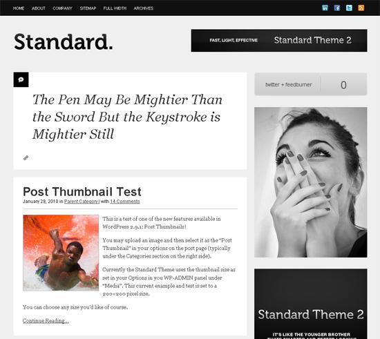 Standard Theme For WordPress