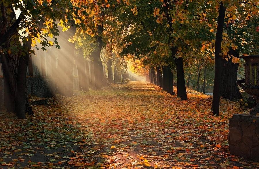 深秋摄影图片欣赏 组图