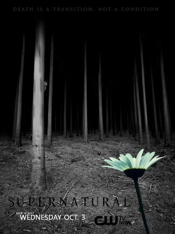 《凶鬼恶灵》第8季海报
