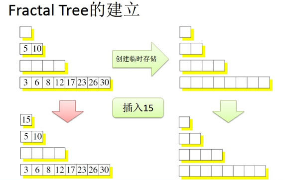 Fractal Tree的建立