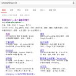 Google 站内相关信息
