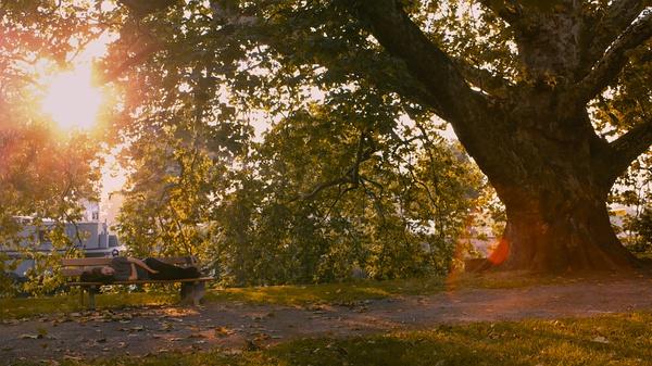 《阿黛尔的生活》 的剧照之孤独