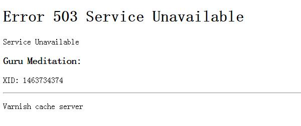 Varnish Error 503